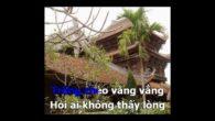 Thái Bình Quê Lúa karaoke