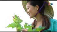 Dân ca: Sông nước Thu Bồn